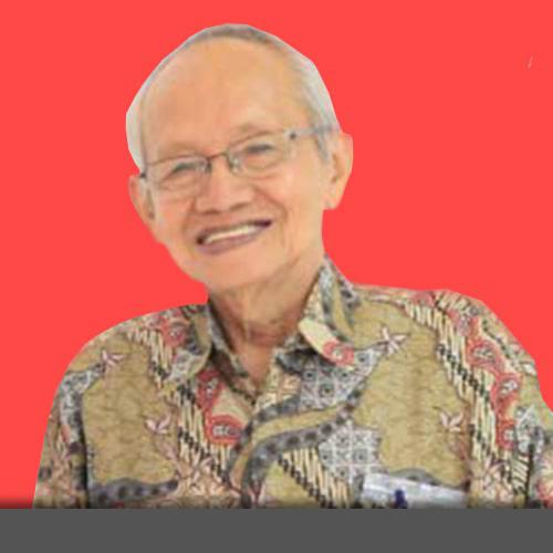 Prof. Dr. H. Sidik, Apt